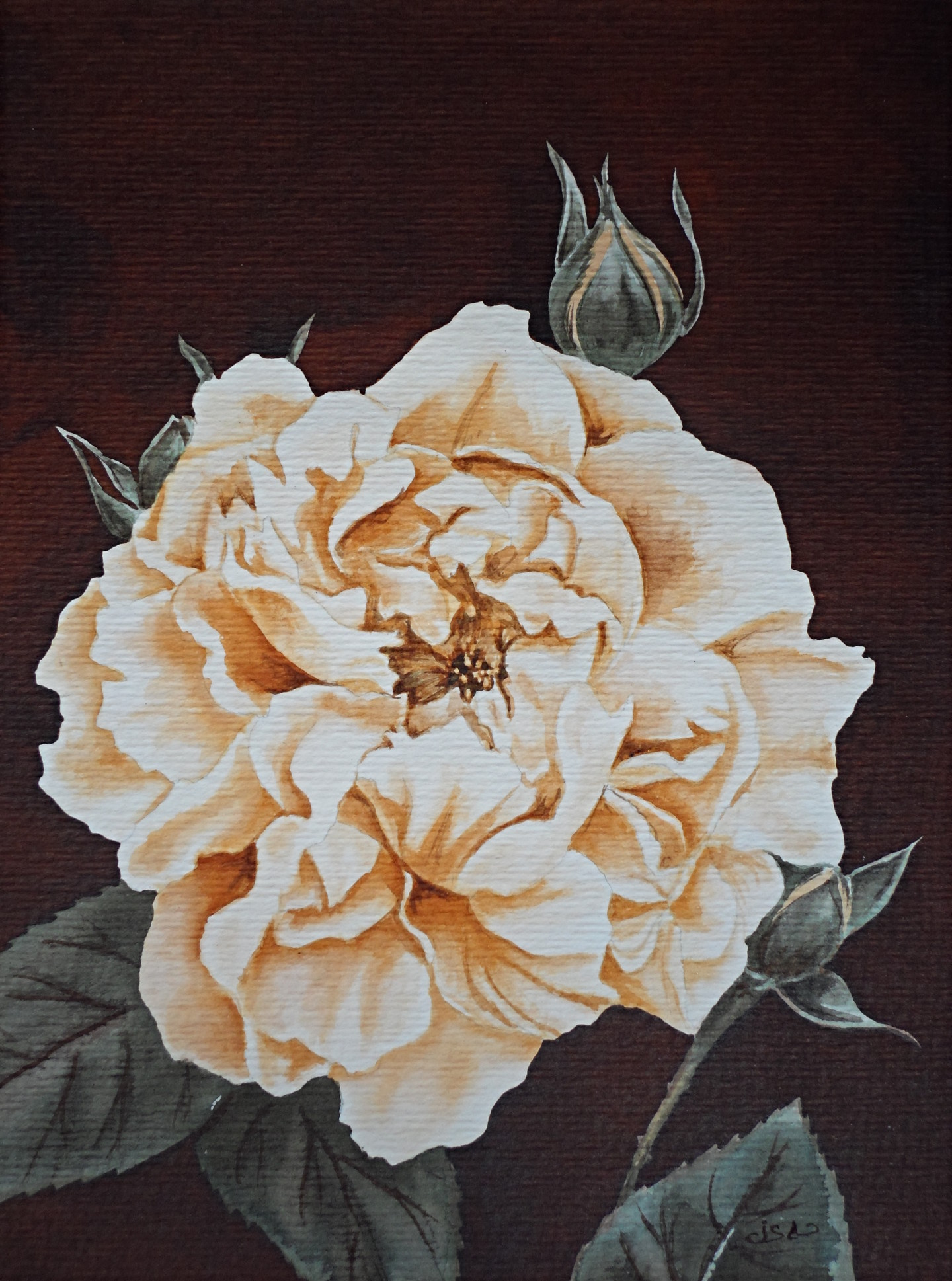 Isabelle Blanchon - rose-sepia